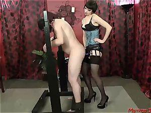 Many female dominance dominatrixes predominate subjugated masculines
